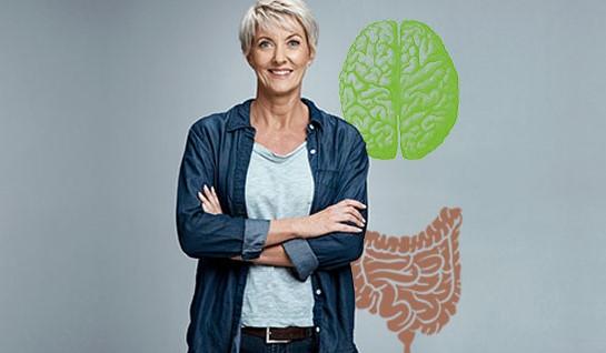 Der Darm – unser zweites Gehirn