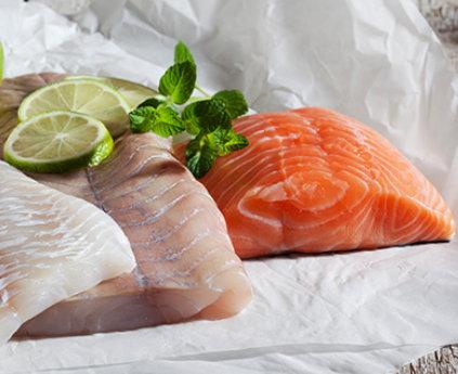 Schlau Und Schlank Dank Fisch